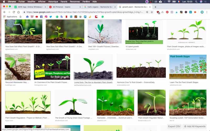 Recherche Growth Plant (2)