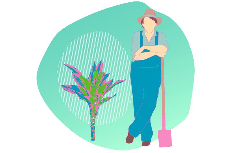 Twaino les jardiniers du SEO
