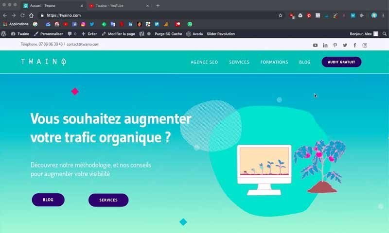 1 Site Web avant article