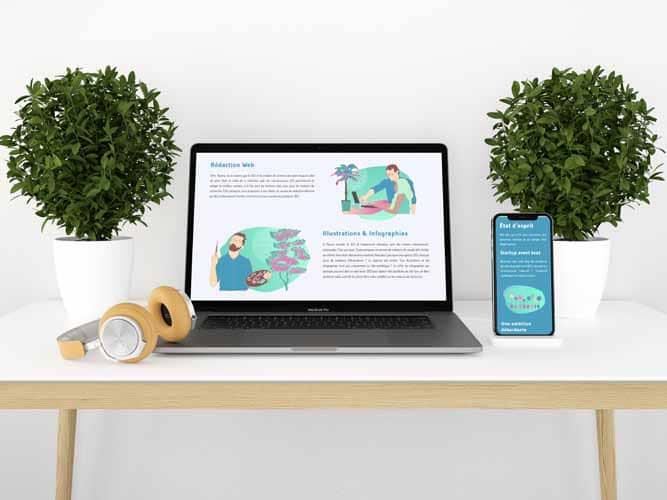 Redaction web et illustration ordinateur