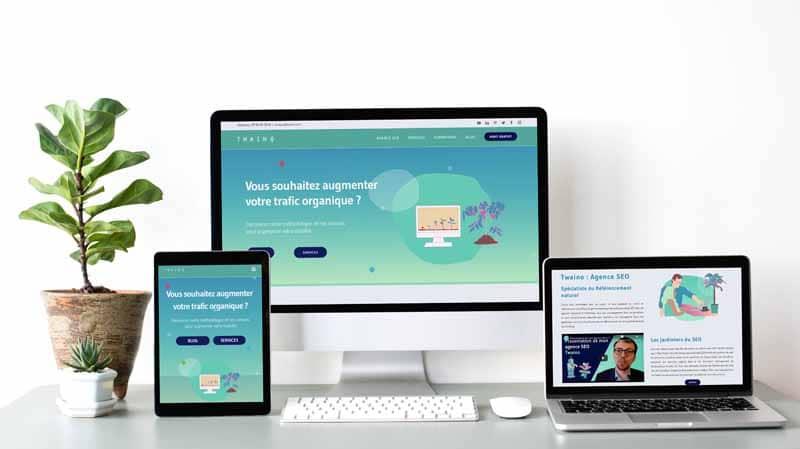 Le Site Web de Twaino Agence SEO