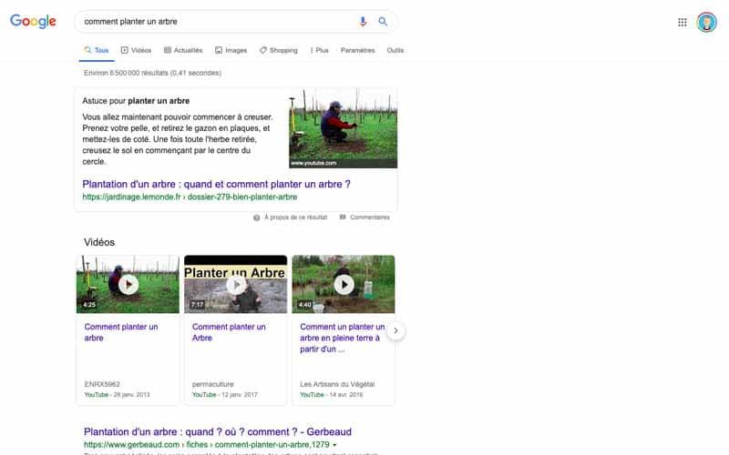 Résutats videos comment planter un arbre