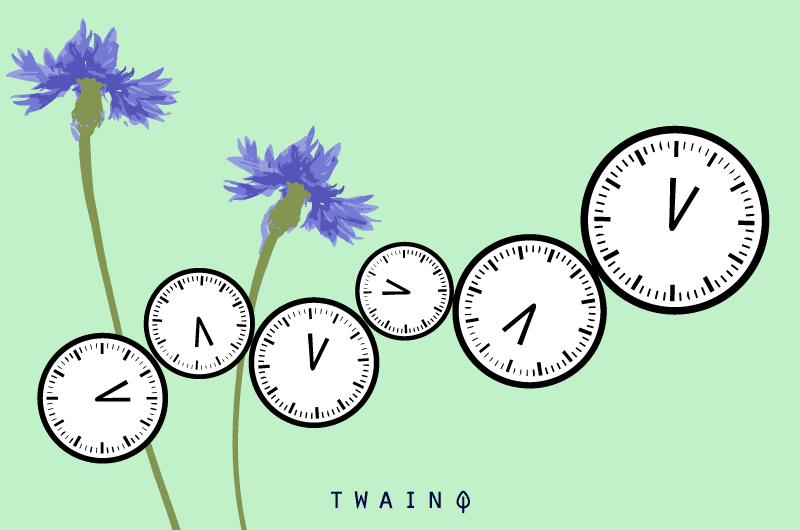 Le temps en SEO