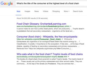 Google avait du mal a bien comprendre les requetes
