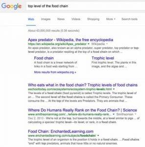 Google n arrivait pas a donner des resultats precis pour des requetes consises