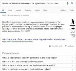 Google comprend mieux les requetes longues