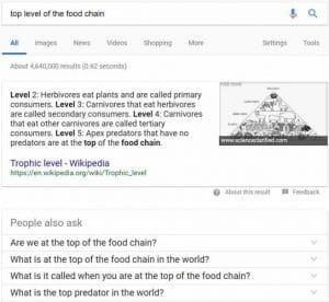Google arrive a donner des resultats precis pour des requetes consises
