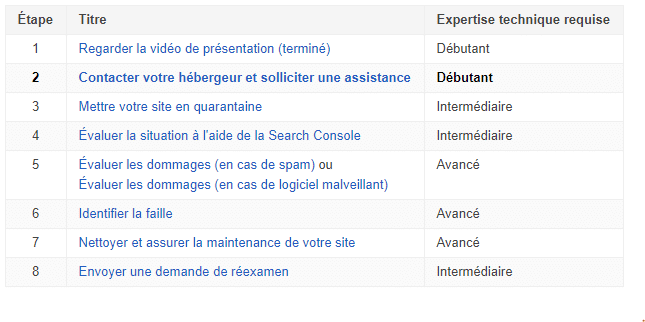 Assistance Google pour site web pirate 2