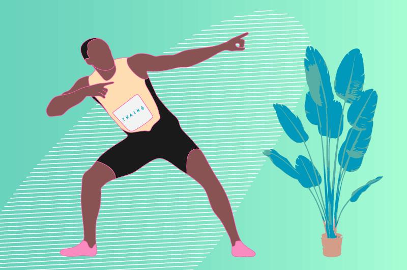 De 3000 a 4000 visiteurs par mois sur Twaino blog Usain Bolt