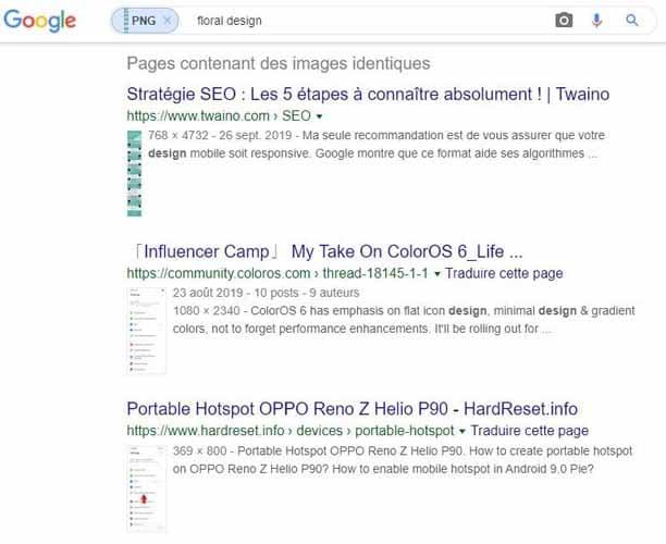 Resultat de recherche dans Google Images