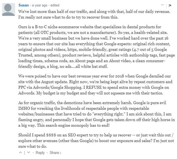 Temoignage de Susan sur sa baisse de trafic suite a la mise a jour de Google