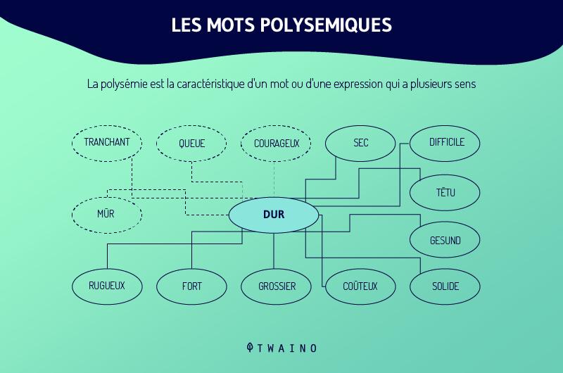 Les mots polysemiques