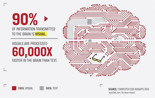 Le cerveau humain traite plus les informations visuelles