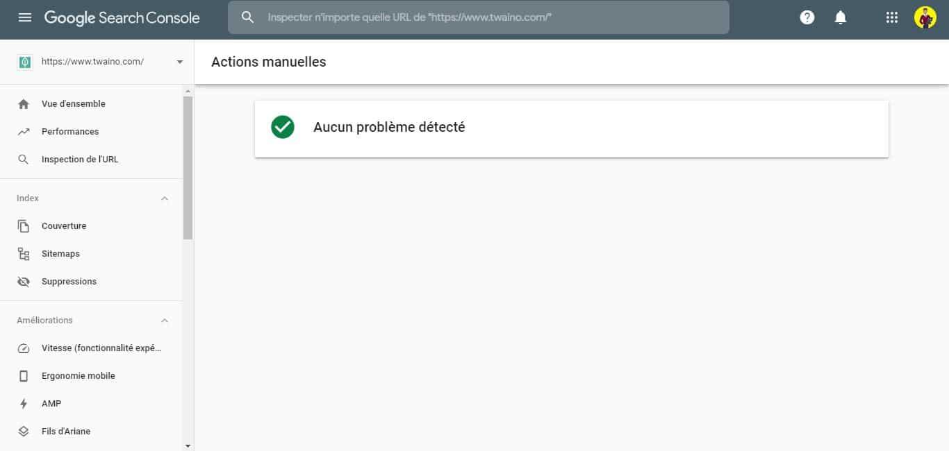 Verifier actions manuelles dans la Search Console
