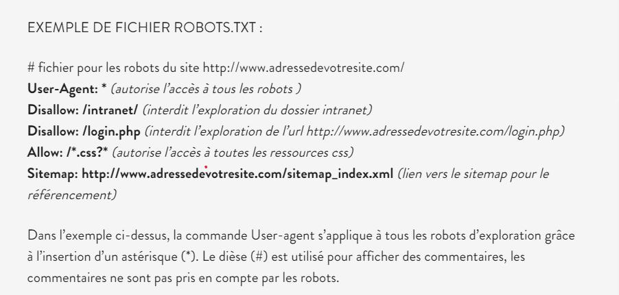 Un exemple de fichier robots txt