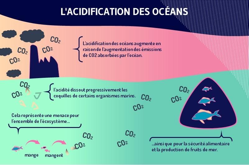 L acidite au niveau des oceans