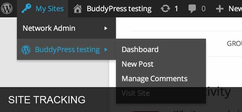BuddyPress Testing