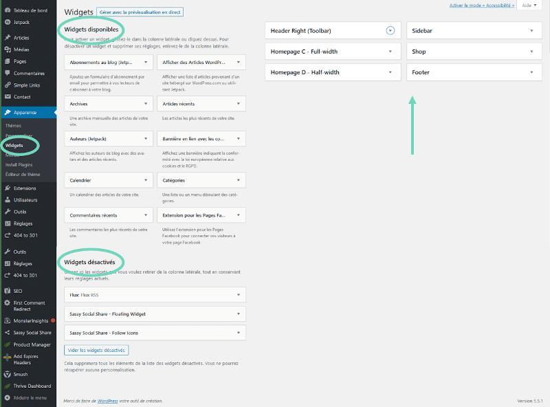 Onglet Widgets dans WordPress