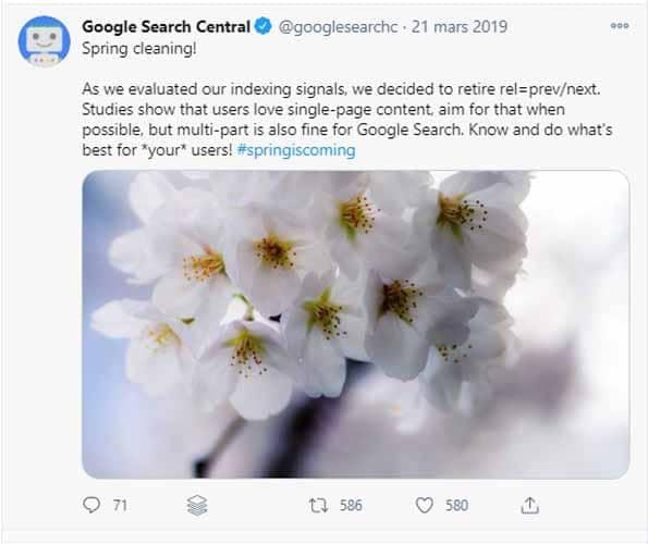 Tweet Google search central