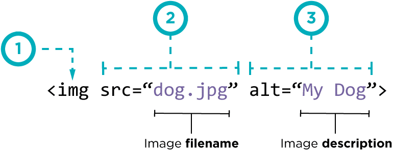 Structure de l Alt texte