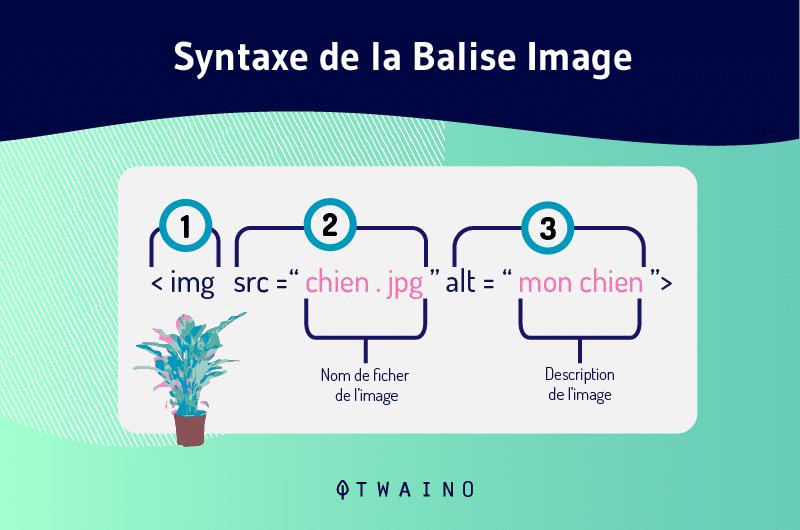 Syntaxe de la Balise Image