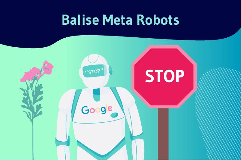 Balise Meta Robots 1