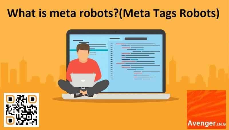 Qu est ce que les meta robots Meta Tags Robots