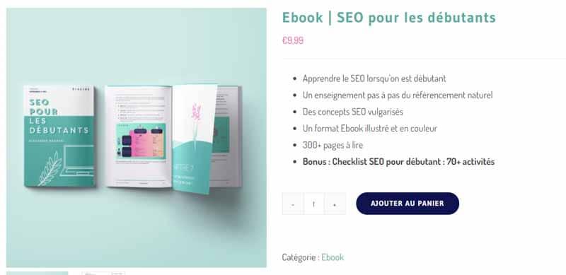 Ebook seo pour les debutants