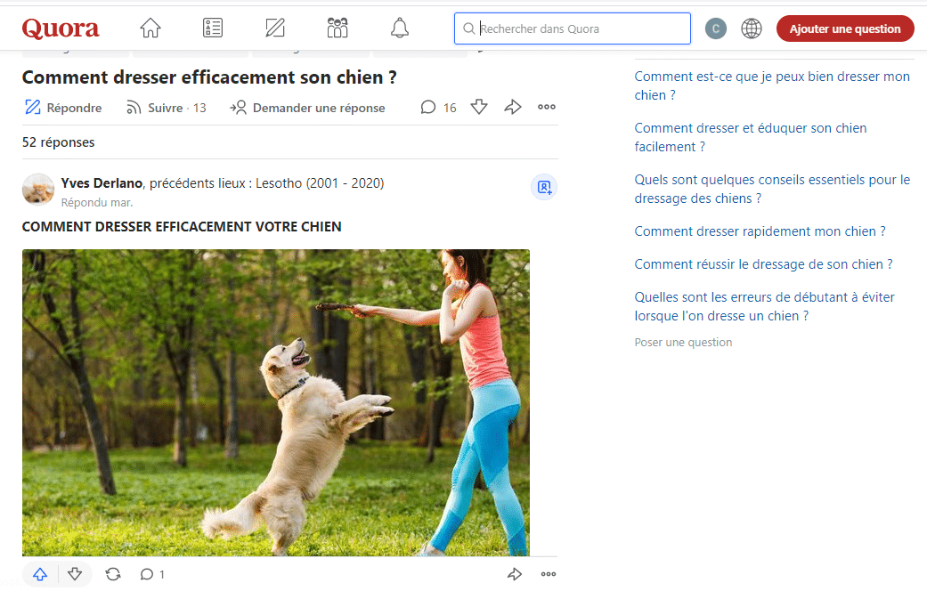 Quora comment dresser efficacement son chien