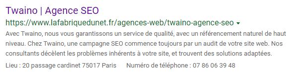 Bing Twaino agence seo