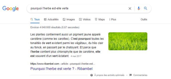 Rechercche google pourquoi l herbe est elle verte