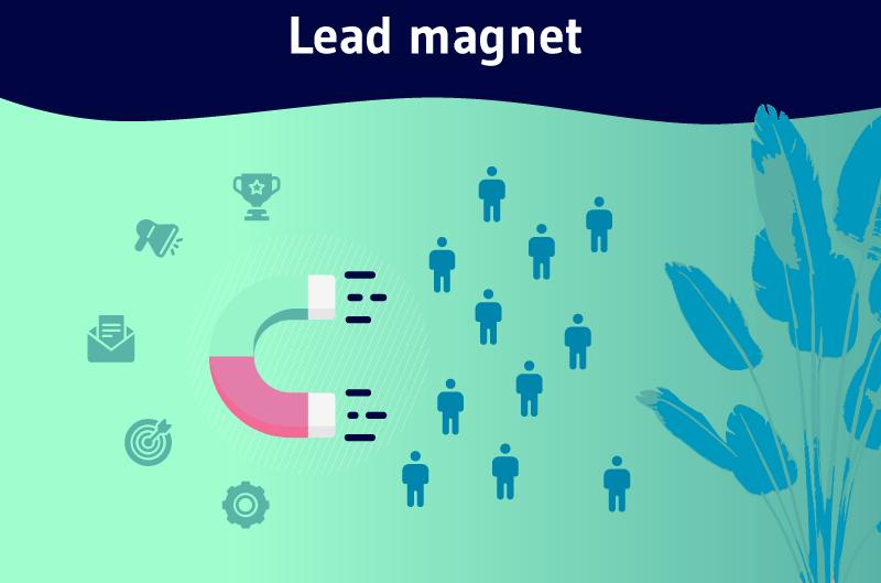 Lead-magnet-1
