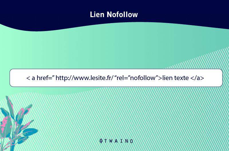 Lien-Nofollow