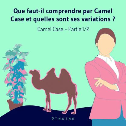 PARTIE 1 Carrousel Camel_Case-01 Definition et variatons