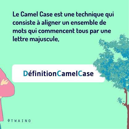 PARTIE 1 Carrousel Camel_Case-02 Techniaue visant a aligner des mots