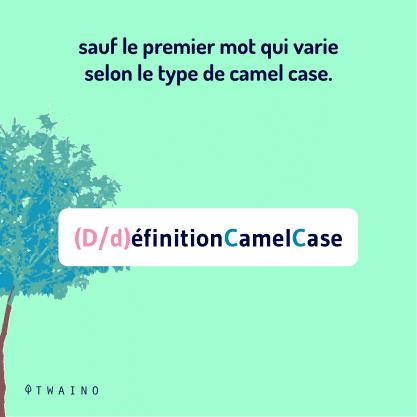 PARTIE 1 Carrousel Camel_Case-03 Le premier mot varie