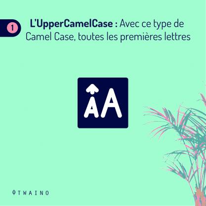 PARTIE 1 Carrousel Camel_Case-06 UpperCamelCase