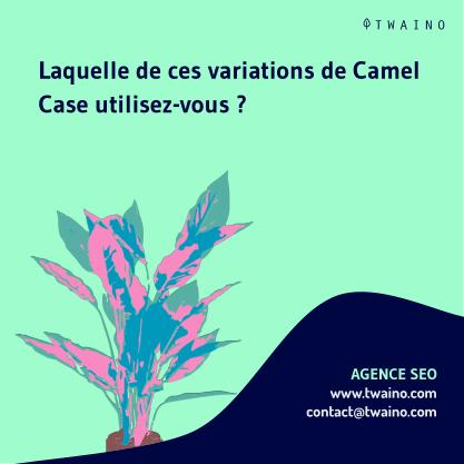 PARTIE 1 Carrousel Camel_Case-10 Quelle variation utilisez vous