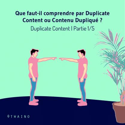 PARTIE 1 Carrousel Duplicate_Content-01 Que faut il cmprendre