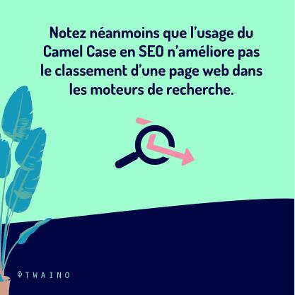 PARTIE 2 Carrousel Camel_Case-05 Usage du camel case