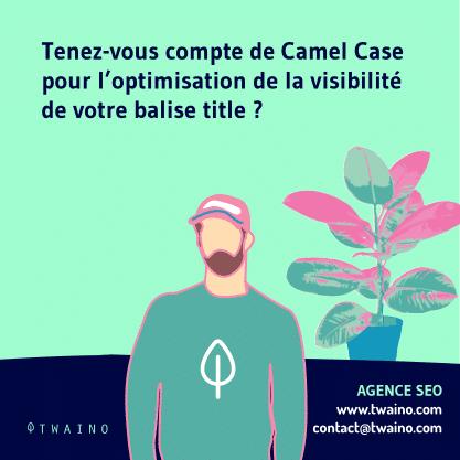 PARTIE 2 Carrousel Camel_Case-10 Tenez compte