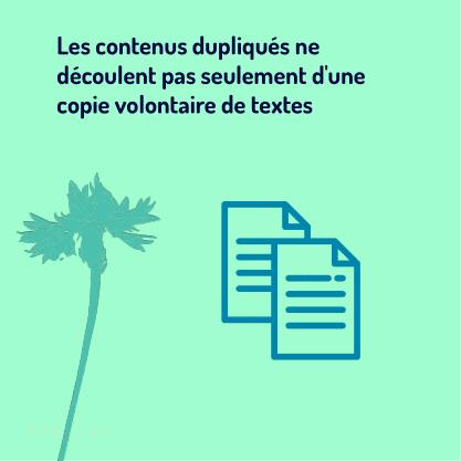 PARTIE 2 Carrousel Duplicate_Content-02 Copie volontaire de textes
