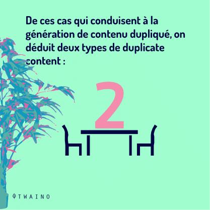 PARTIE 2 Carrousel Duplicate_Content-05 Deux types