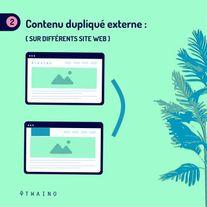 PARTIE 2 Carrousel Duplicate_Content-08 Contenu duplique externe