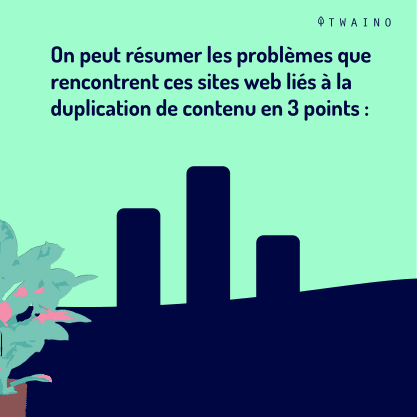 PARTIE 3 Carrousel Duplicate_Content-04 Problemes rencontre par les sites web