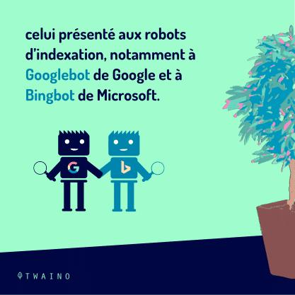 partie 1 - Carrousel_Cloaking-09 Googlebot de Google et Bingbot de Microsoft