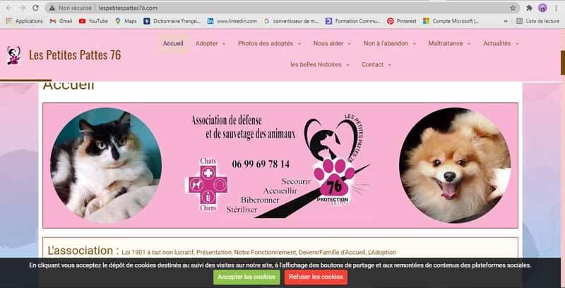 Site web a but non lucratif