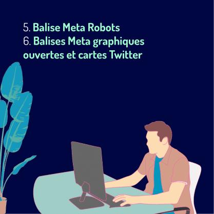 Carrousel Balise meta Partie 3-06 Balise Meta Robots