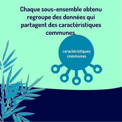 PART 1 Carrousel-Clustering-05 Caracteriiistiques communes