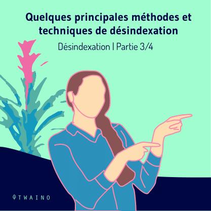 PART 3 Carrousel_Desindexation-01 Principales methodes
